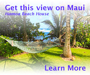 Hamoa Beach House - Maui