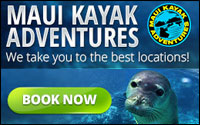 Kayak Tours and Adventures
