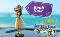 Kauai Rent-a-Car Services