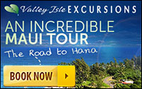 Maui's Top Road to Hana Tour