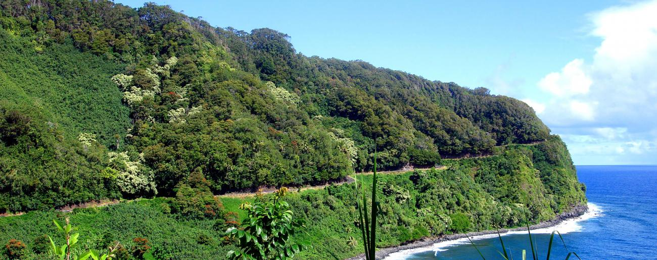 Hana Highway Coastal Curves