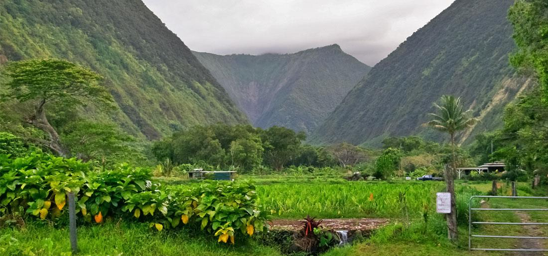 Waipio Valley - Big Island of Hawaii