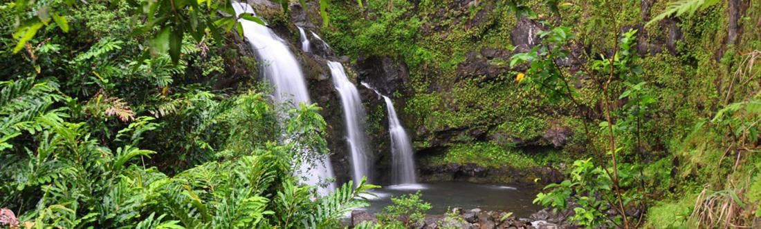 Waterfall along the famous Road to Hana