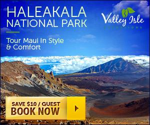 Haleakala Tours - VIE - 300x250 - SideBar