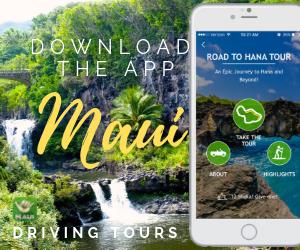 Maui Driving Tour App